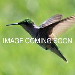 Large Daisy Recycled Glass Bowl - Aqua